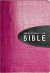 AMPLIFIED EVERY DAY LIFE BIBLE