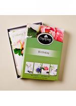 LUSTROUS BIRTHDAY BOX