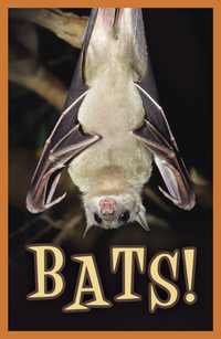 BATS TRACT PACK OF 25