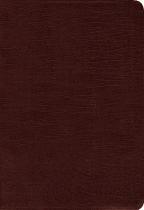 AMPLIFIED BIBLE LARGE PRINT