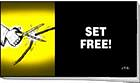 SET FREE CHICK TRACT PACK OF 25