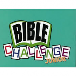 BIBLE CHALLENGE JUNIOR CARD GAME