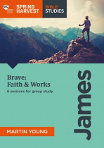 BRAVE: FAITH & WORKS SPRING HARVEST 2018 WORKFORCE