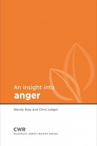 AN INSIGHT INTO ANGER
