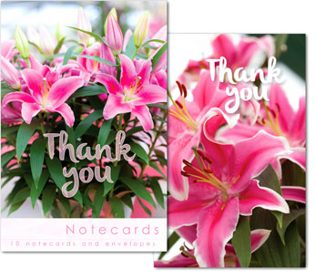 PINK LILLY THANK YOU NOTELETS PACK OF 10