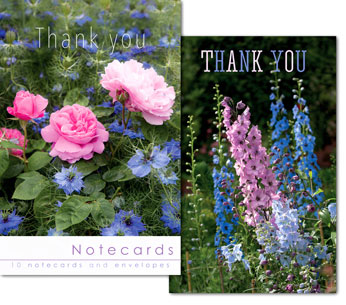 DELPHINIUM AND ROSES THANK YOU NOTELETS PACK OF 10