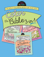 COLOUR THE BIBLE 3 IN 1